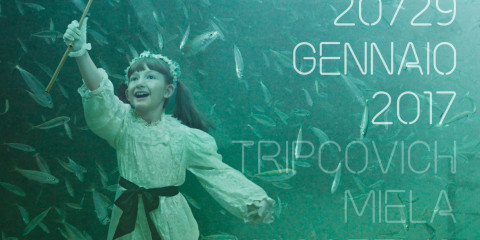tff28-immagine-vert